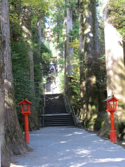 The sacred groves around Shinto Shrines are powerful energetically and elementally.