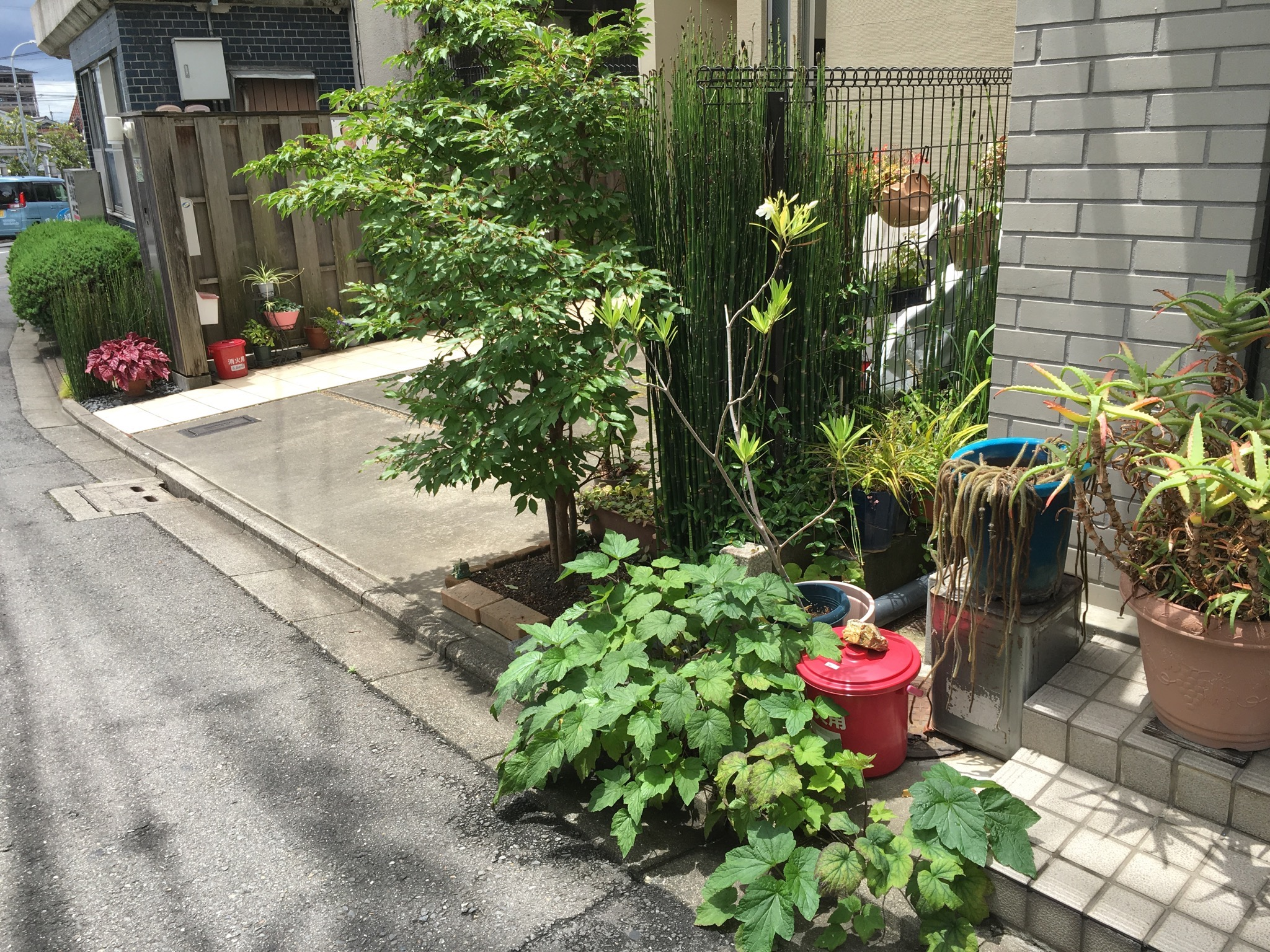On June 22nd I discovered a local variant of the Kyoto fire bucket in Hanazono, a northern suburb of the city. The red buckets there had a lid on them! Possibly to avoid mosquitoes.