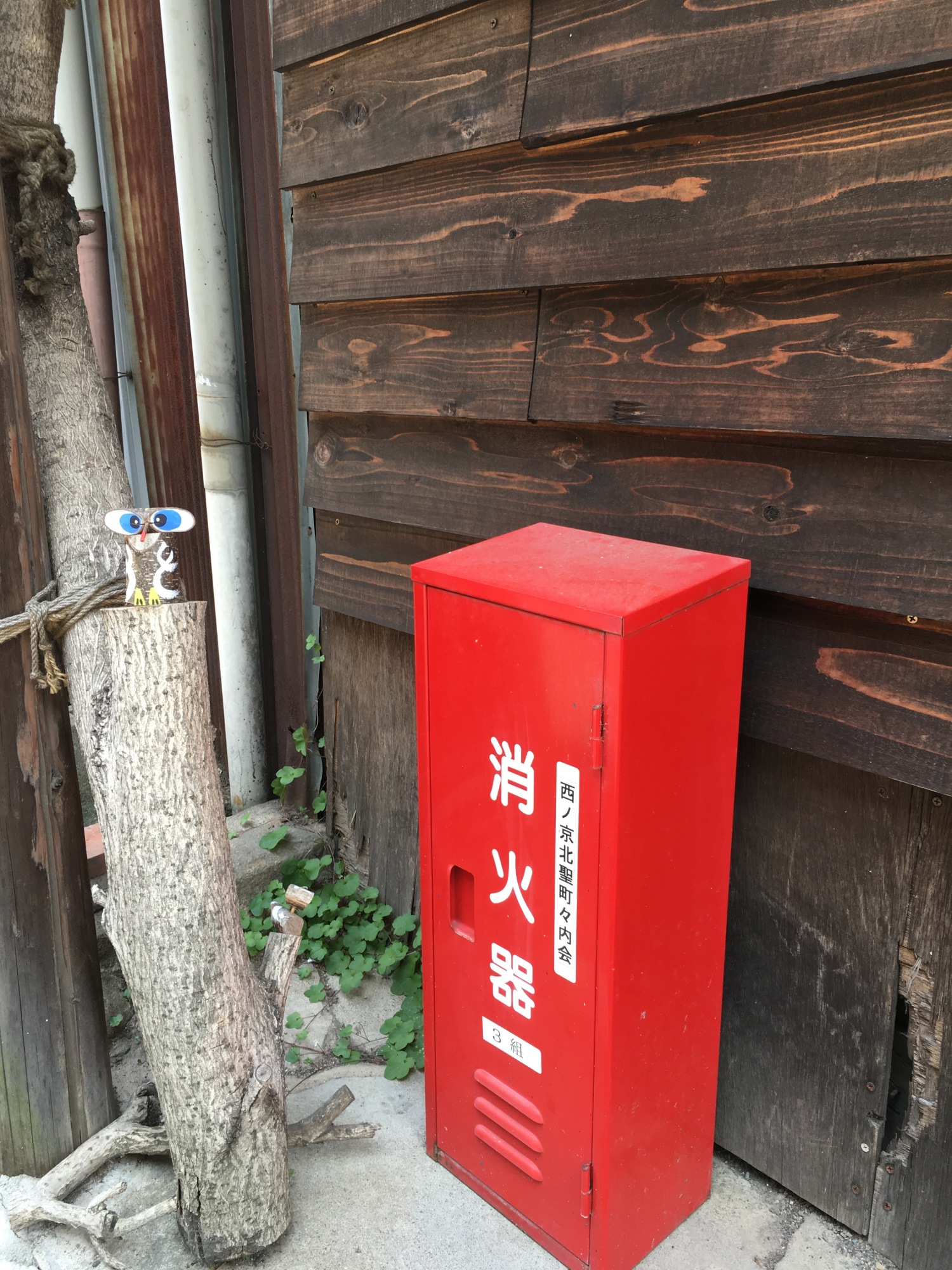 These boxes are commonly seen in the streets of Kyoto. They contain fire extinguishers.