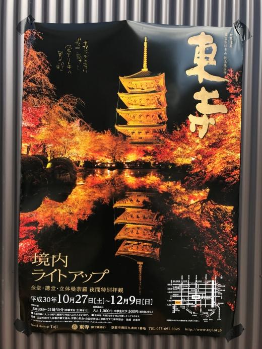 Toji Autumn illumination 2018